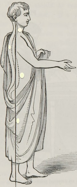Line drawing of a clean-shaven man wearing a toga.